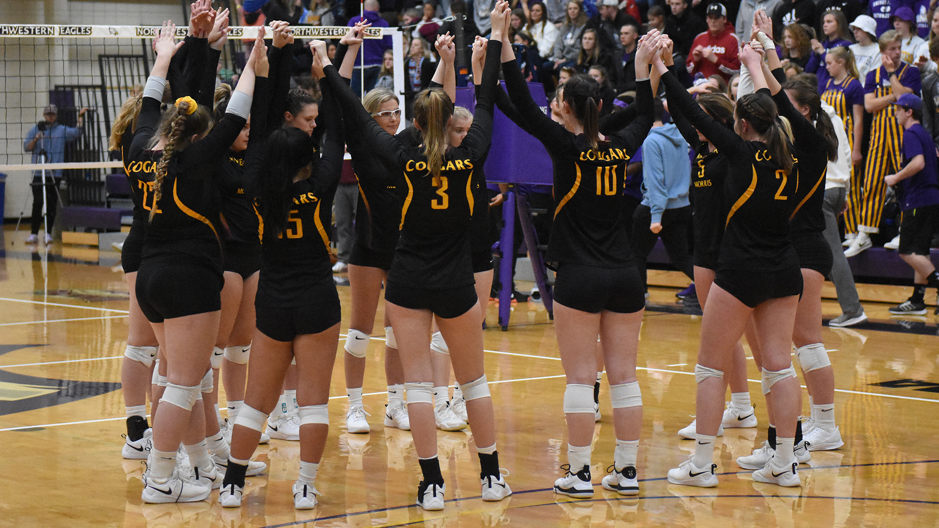 2020 Cougar Volleyball Releases Schedule University Of Minnesota Morris Athletics